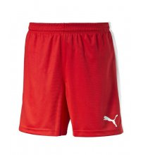 Puma Pitch Shorts With Innerbrief